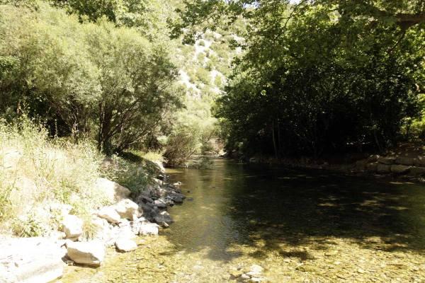 Rivier de Vis in Zuid Frankrijk