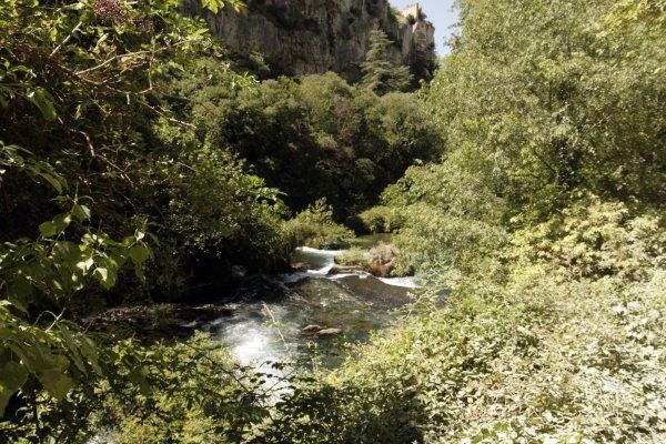 Er is veel groen langs de rivier de Sorgue bij Sorgue-Fontaine-de-Vaucluse