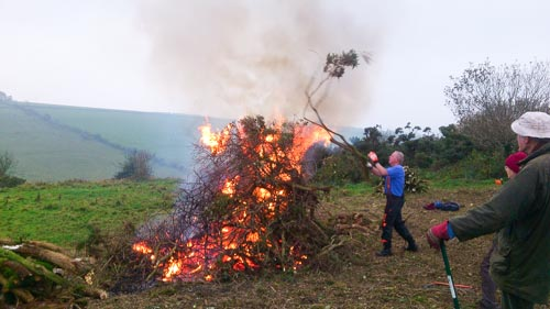 Conservation work and bonfire