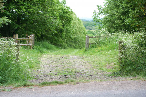 Gateway to a track leading down between lines of trees.
