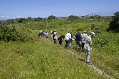 People walking along a track through gentle grassy slopes