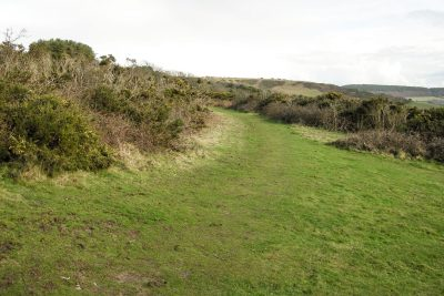 Area of short grass with scrub either side of the track