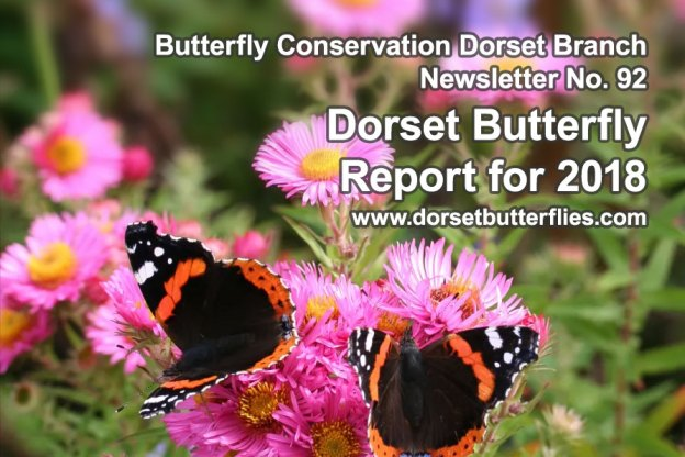 Dorset Butterfly Report cover