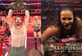 Análisis WWE Elimination Chamber