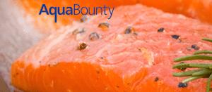 AquAdvantage_Salmon