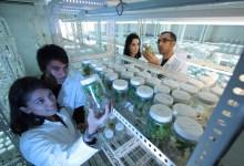 Photo of Varni z znanostjo