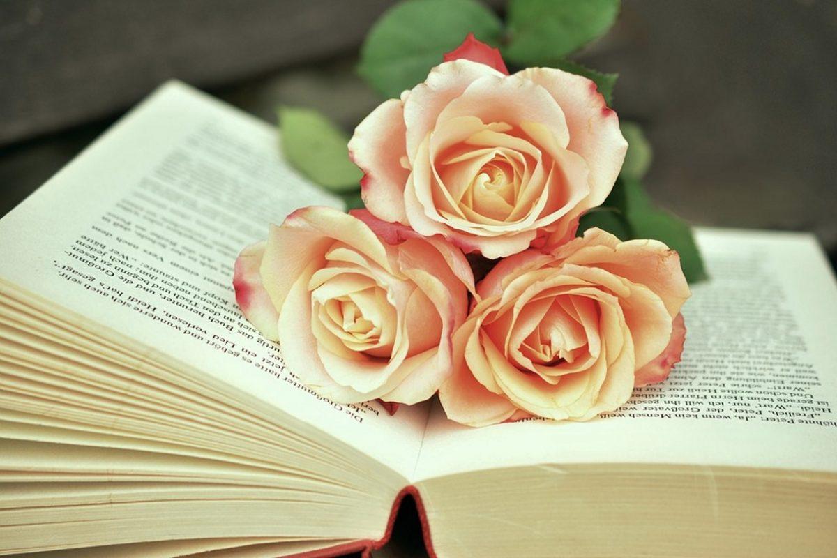 Jurjevo – svetovni dan knjige in avtorskih pravic