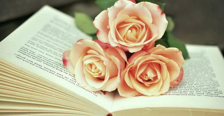 knjiga, avtorske pravice, avtorskih pravic, Svetovni dan knjige
