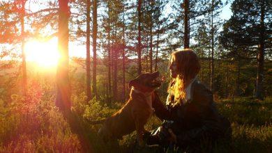 Photo of Lastniki psov bolj zdravi in aktivni