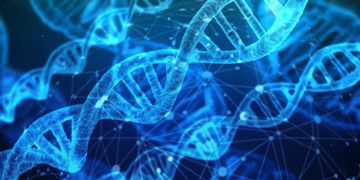 DNK, biologije, biologija, geni