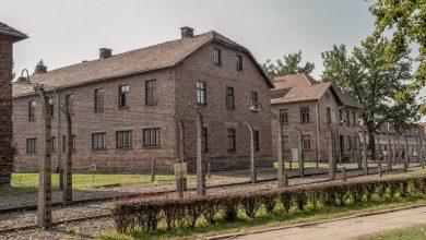 """Photo of Na policah kmalu skrivni dnevnik """"poljske Ane Frank"""""""