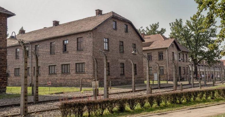 skrivni dnevnik, Renie Spiegel, Življenje mladenke v senci holokavsta, Auschwitz