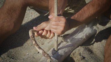 Photo of Neandertalci naj bi izumrli zaradi manjše rodnosti