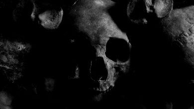 Devil Doll, Mark Of The Beas, Laibach, Kultna neznanka, Mr. Doctor, Skrivnostna,