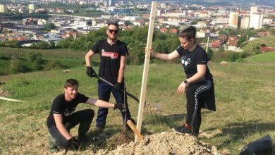 Photo of ŠOUM in mariborski študenti na pomoč kmetijam