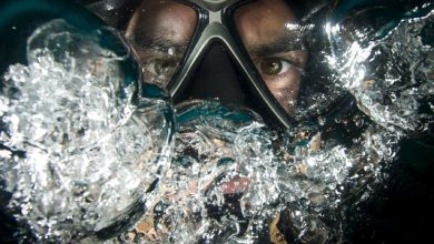Photo of 7 neverjetnih stvari, ki jim moraš raziskati pod vodo