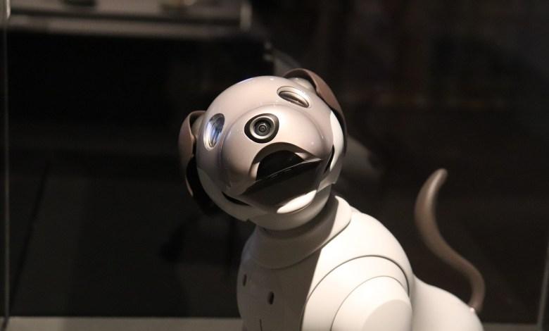 robotski pes, robot