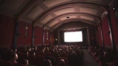 Letni kino Minoriti, Lutkovno gledališče Maribor, Žiga Brdnik, kino, predstave, letnega kina, letni kino,
