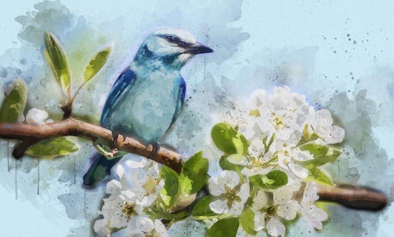 Mladinska knjiga, modra ptica, natečaj, razpis, Skrivno društvo KRVZ, Besedila