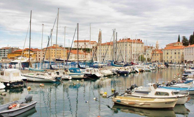 Slovensko morje , Morska biološka postaja Piran, Tujerodni organizmi, pozornost, morje, Biodiverzitetna, SOS za vode