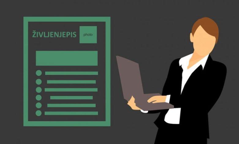 laganje v življenjepisu, CV, laž, življenjepis, lažejo, nefix, zavod nefix, kvalifikacij, kvalifikacije, izkušnje,