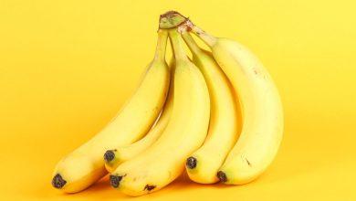 Photo of Banane – sadež, ki mu v bližnji prihodnosti grozi izumrtje