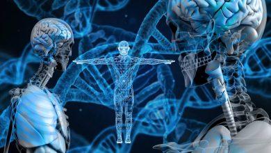 Photo of Nobelova nagrada za kemijo za tehnologijo genske škarje