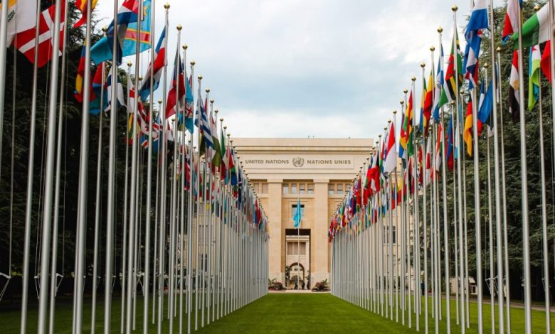 vključujočem izobraževanju, Organizacija združenih narodov, človekovih pravic, natečaju, natečaj, mladi,