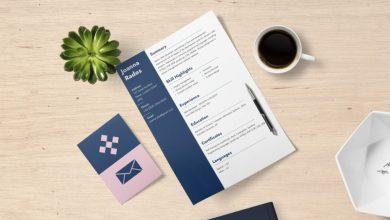 Iskanje službe, služba, zaposlitev, delovno mesto, berljivost, barve, F-vzorec, Times New Roman, pisanje življenjepisa, CV