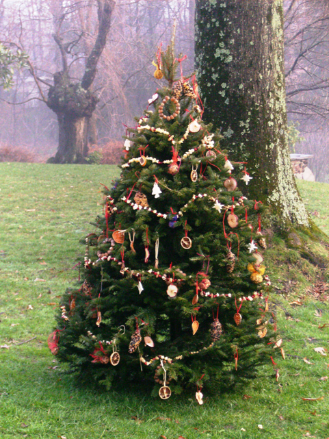 How To Decorate An Outdoor Christmas Tree For Birds