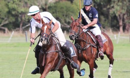 Yarra Valley Polo Tournament