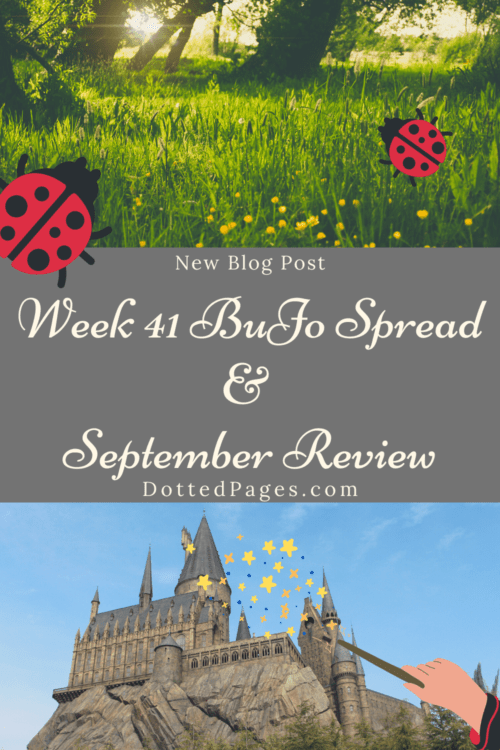 Week 41 and September Review Pin