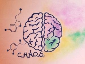 cervello, cambiamento, benessere, armonia, equilibrio
