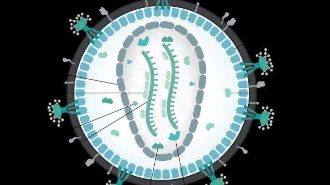 HIV in Italia, migliaia di nuove infezioni ogni anno, contagio avanza