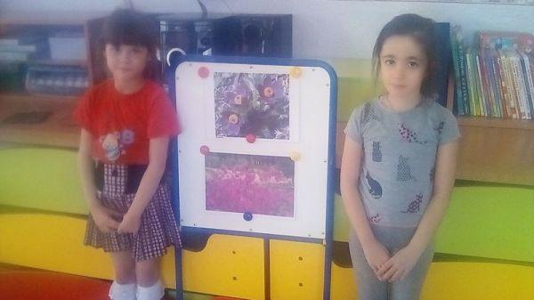 Забайкалье - Оф.сайт Детского сада №44 г.Чита