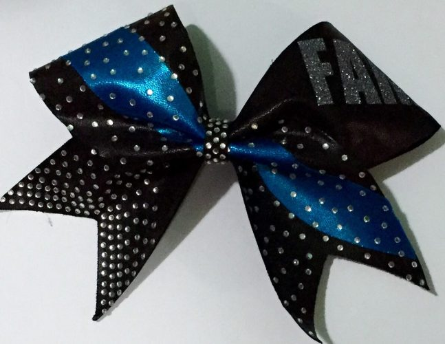 All Star Cheerleading vs. Rec: A Guest Post by My Daughter