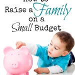 How to Raise a Family on a Small Budget
