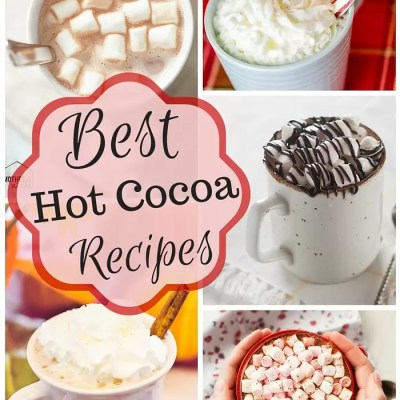 Best Hot Cocoa Recipes on the Web