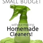 Clean House on a Small Budget