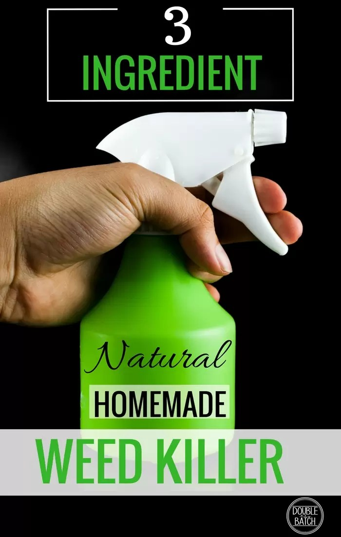 Awesome Homemade weed killer that is super cheap and easy to make!