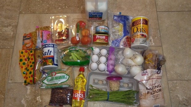 SNAP Food Stamp Challenge Week 1 Remaining