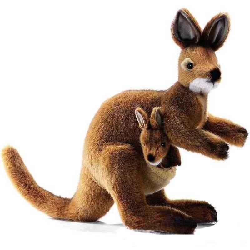 Anima Peluche Wallaby Avec Bb 35 Cm