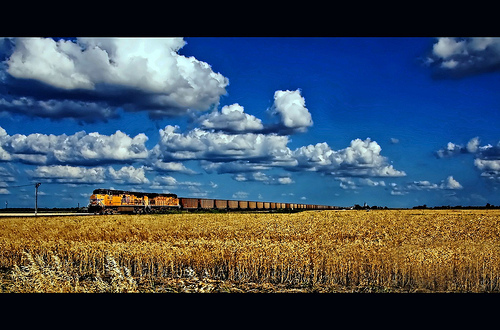 Wheat Train