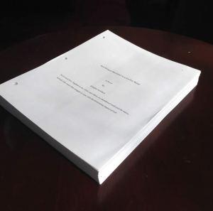 redwingmanuscript