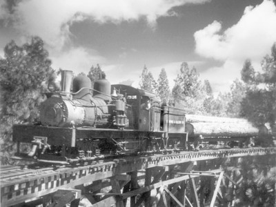 Caldor Railroad -