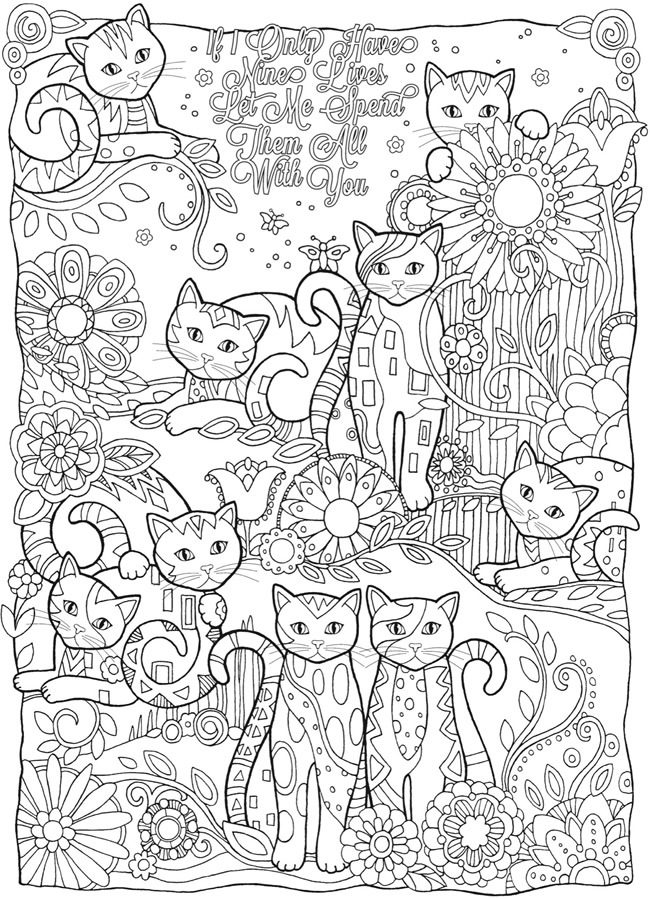 adorable cats adult coloring page