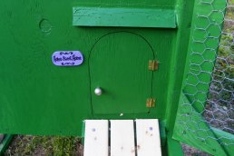 Front door with a drip edge over top