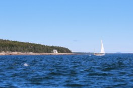 sail boat in front of Narraguagus Light