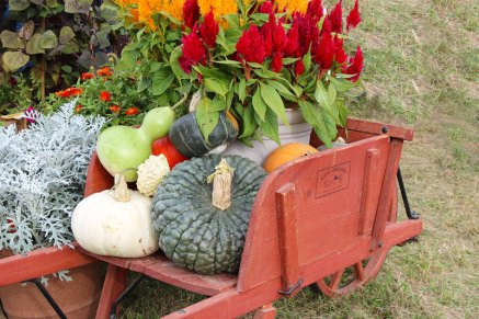 gourd cart