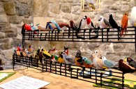 Lourdes from Spain created this lovely display of birds!